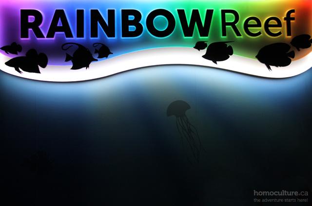 Rainbow Reef at the Ripley's Aquarium of Canada